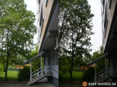 orez-vetiev-stromov-zasahujucich-do-budovy-ktore-poskodzovali-fasadu-safeworks.sk