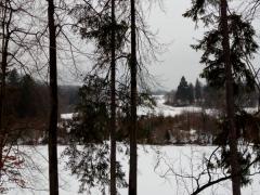 6-spileny-kmen-stromu-buk-a-prichytenie-lana-v-korune-stromu-s-pripravou-na-druhy-strom-a-stahovanie-za-pomoci-navijaku-elektrickeho-safeworks.sk