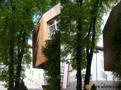 orezanie-konarov-stromu-suchajucich-o-budovu-safeworks.sk