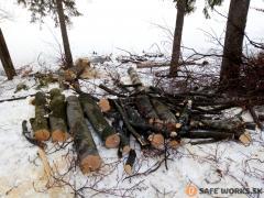 13-kmen-stromov-rozpileny-na-mensie-kusy-a-pripravene-na-nakladku-a-odvoz-safeworks.sk